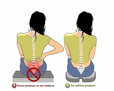 Tailbone Pain Relief Cushions to Help you Relieve Back Pain